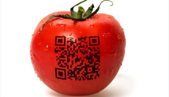 Bringing End-to-End Traceability to the F&B Industry Supply Chains